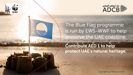 Dec 2013 : Blue Flag
